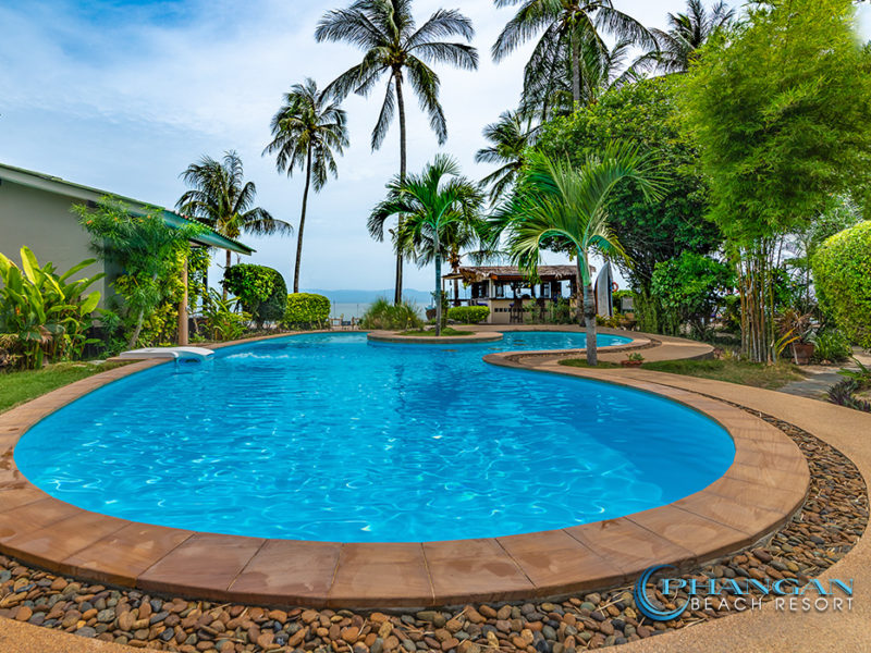 Resort koh phangan swimming pool